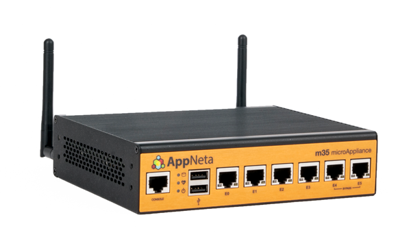 AppNeta's M35 appliance is best for monitoring remote offices